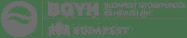 Budapest Gyógyfürdői és Hévizei Zrt. Logo - Acterra Partner
