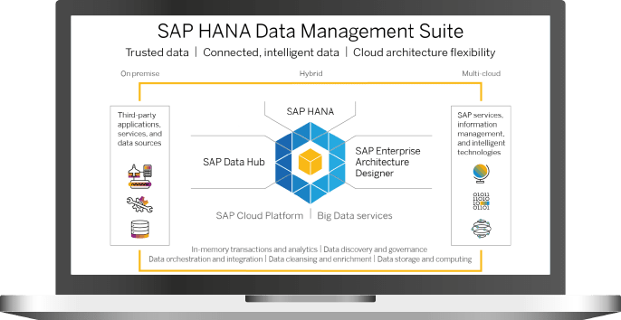 SAP HANA Data Management - Acterra