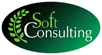 Soft Consulting Partner